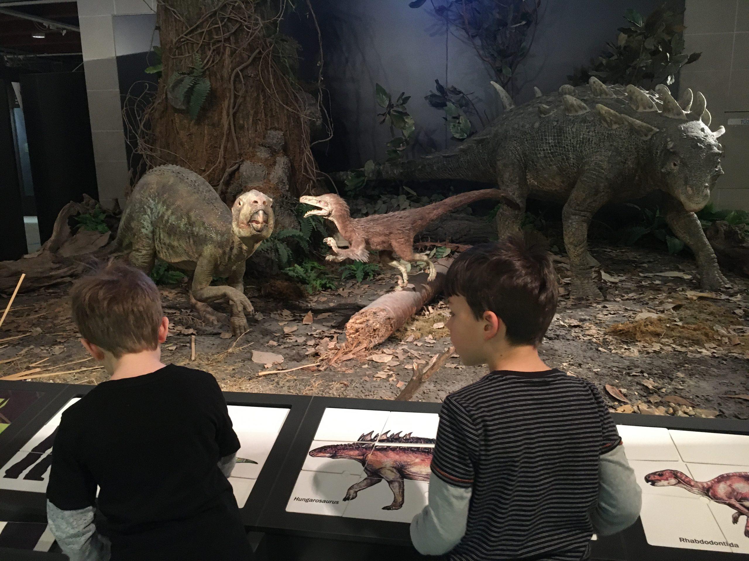 Látogatás a Természettudományi Múzeumban